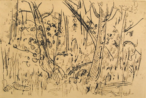 "<h4 style=""margin:0px 0px 5px 0px;"">(The bush)</h4>Medium: Etching<br />Price: $500 <span style=""color:#aaa"">