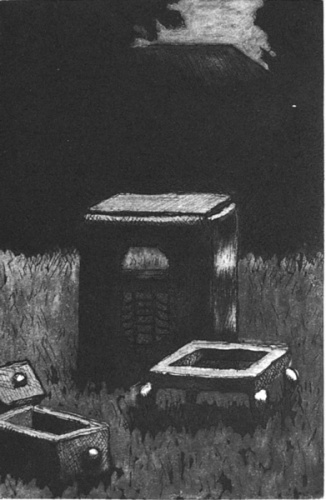 "<h4 style=""margin:0px 0px 5px 0px"">Night Music 5</h4>Medium: Etching<br />Price: $550 