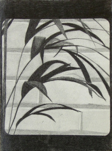 "<h4 style=""margin:0px 0px 5px 0px;"">Untitled 2</h4>Medium: Graphite<br />Price: Sold <span style=""color:#aaa"">