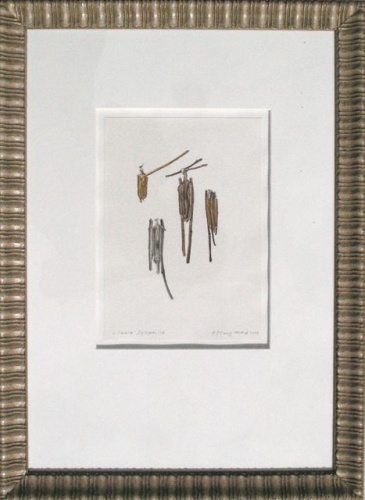 "<h4 style=""margin:0px 0px 5px 0px;"">Clania ignabilis (framed)</h4>Medium: Watercolour & graphite<br />Price: $2,200 <span style=""color:#aaa"">