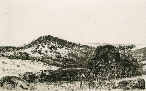 "<h4 style=""margin:0px 0px 5px 0px;"">You Yangs landscape</h4>Medium: Etching<br />Price: $500 <span style=""color:#aaa"">