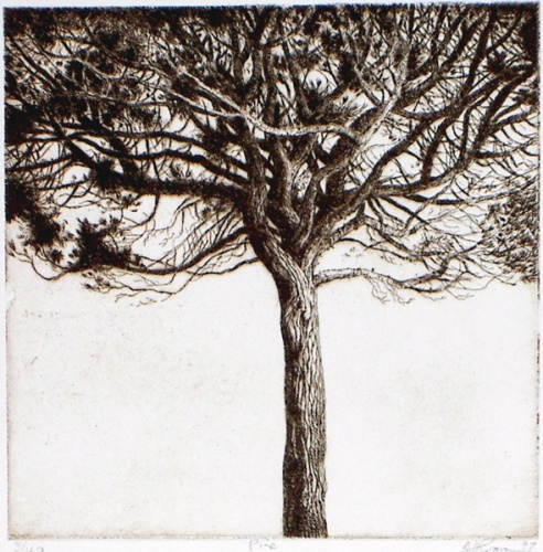 "<h4 style=""margin:0px 0px 5px 0px"">Pine</h4>Medium: Etching<br />Price: $360 