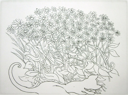"The Daisy Bush<br /><br />Medium: Etching<br />Price: $1,250<br /><a href=""Artwork-Blackman-TheDaisyBush-58.htm"">View full artwork details</a>"
