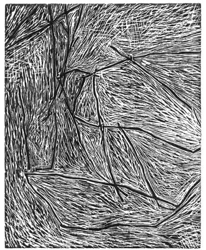 "<h4 style=""margin:0px 0px 5px 0px"">Falling light by Andrew Gunnell</h4>Medium: Wood Engraving<br />Price: $260 
