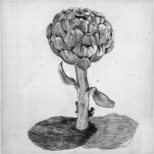 "<h4 style=""margin:0px 0px 5px 0px"">Artichoke by Kristin Headlam</h4>Medium: Etching &amp; Drypoint<br />Price: $700<span class=""helptip"" style=""color:#ff0000;"" title=""This edition has been partially sold""><img src=""/images/reddotpartially.gif"" border=""0"" height=""10"" /></span> 