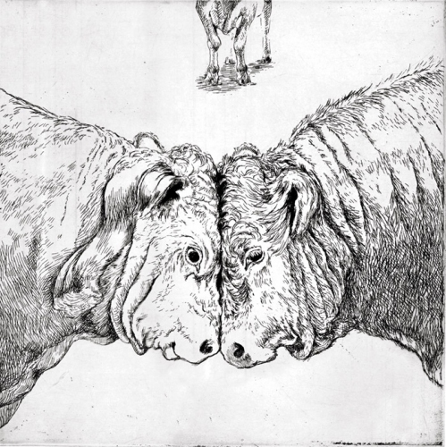 "<h4 style=""margin:0px 0px 5px 0px"">Stalemate by Kristin Headlam</h4>Medium: Etching & Drypoint<br />Price: $700<span class=""helptip"" style=""color:#ff0000;"" title=""This edition has been partially sold""><img src=""/images/reddotpartially.gif"" border=""0"" height=""10"" /></span> 