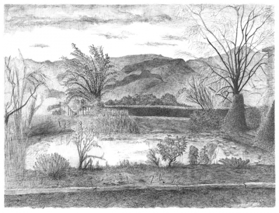"<h4 style=""margin:0px 0px 5px 0px"">Yarra Valley Pond</h4>Medium: Pen and ink on paper, Unframed<br />Price: $2,800 