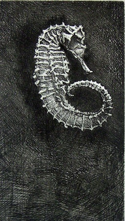 "Seahorse<br /><br />Medium: Etching<br />Price: $180<br /><a href=""Artwork-Jones-Seahorse-1121.htm"">View full artwork details</a>"