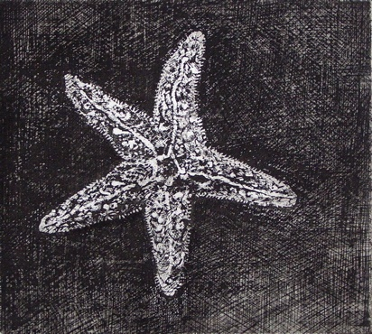 "Starfish<br /><br />Medium: Etching<br />Price: $260<br /><a href=""Artwork-Jones-Starfish-1297.htm"">View full artwork details</a>"