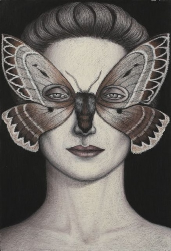 "Anthela oressarcha Moth Mask, Framed<br /><br />Medium: Oil pastel on paper<br />Price: Sold<br /><a href=""Artwork-Klein-AnthelaoressarchaMothMaskFramed-2481.htm"">View full artwork details</a>"