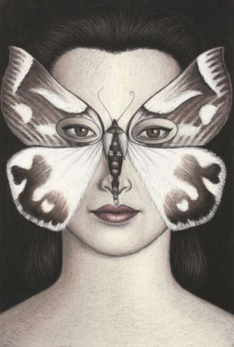 "Thalaina kimba Moth Mask, Framed<br /><br />Medium: Oil pastel on paper<br />Price: Sold<br /><a href=""Artwork-Klein-ThalainakimbaMothMaskFramed-2486.htm"">View full artwork details</a>"