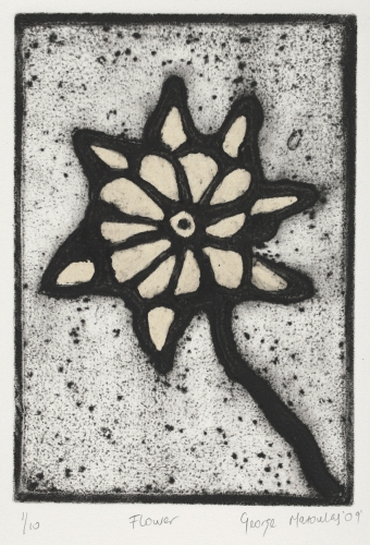 "Flower<br /><br />Medium: Collograph chine colle, Framed<br />Price: $460<br /><a href=""Artwork-Matoulas-Flower-2837.htm"">View full artwork details</a>"