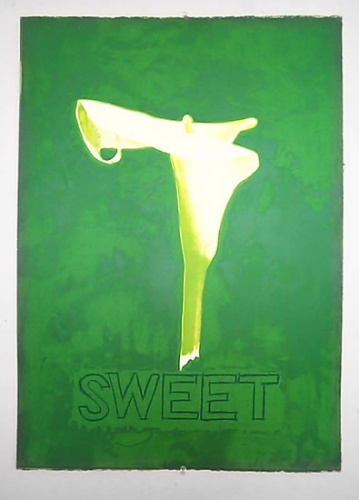 "<h4 style=""margin:0px 0px 5px 0px;"">Sweet</h4>Medium: Screenprint<br />Price: Sold <span style=""color:#aaa"">