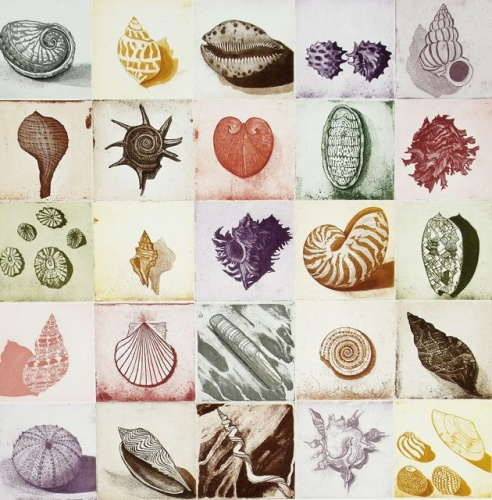 "<h4 style=""margin:0px 0px 5px 0px"">Shell Alphabet (colour)</h4>Medium: Etching<br />Price: $1,850 