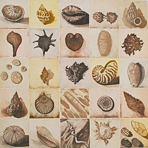 "<h4 style=""margin:0px 0px 5px 0px;"">Shell Alphabet (sepia)</h4>Medium: Etching<br />Price: $1,850 <span style=""color:#aaa"">