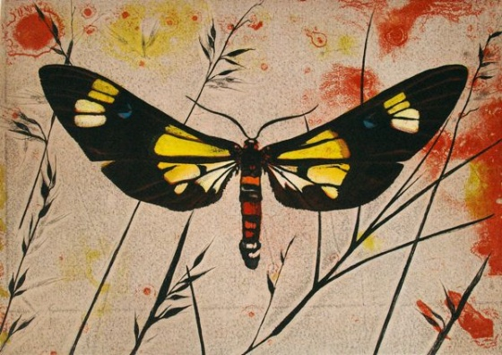 "<h4 style=""margin:0px 0px 5px 0px"">Basker Moth (Euchromia Lethe) by Tiffany McNab</h4>Medium: Etching<br />Price: $950 