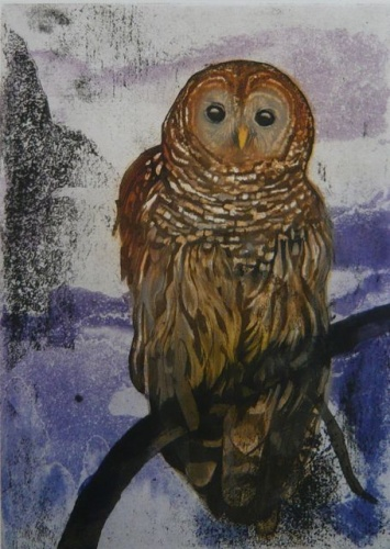 "<h4 style=""margin:0px 0px 5px 0px"">Brazilian Owl by Tiffany McNab</h4>Medium: Etching<br />Price: $950 