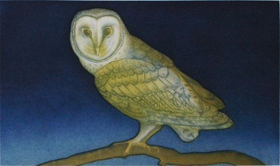 "<h4 style=""margin:0px 0px 5px 0px"">Night Owl by Tiffany McNab</h4>Medium: Etching<br />Price: $680 
