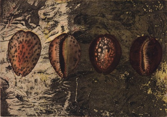"<h4 style=""margin:0px 0px 5px 0px"">Tiger Cowrie and hump-back Cowries by Tiffany McNab</h4>Medium: Etching<br />Price: $950 