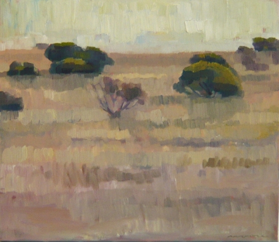 "<h4 style=""margin:0px 0px 5px 0px"">Hillside Flinders Ranges by David Moore</h4>Medium: OIl on linen framed<br />Price: $2,400 