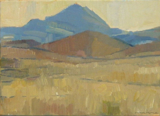 "<h4 style=""margin:0px 0px 5px 0px"">Patawarta Gap Flinders Ranges by David Moore</h4>Medium: Oil on linen framed<br />Price: $1,800 