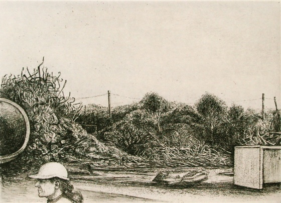 "Demolition Port Melbourne<br /><br />Medium: Etching &amp; drypoint<br />Price: $450<br /><a href=""Artwork-Scurry-DemolitionPortMelbourne-2146.htm"">View full artwork details</a>"