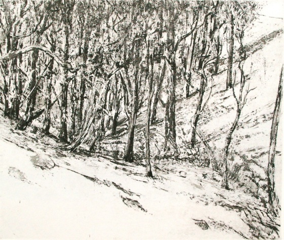 "<h4 style=""margin:0px 0px 5px 0px;"">Gully Toolern Vale</h4>Medium: Etching<br />Price: $550 <span style=""color:#aaa"">