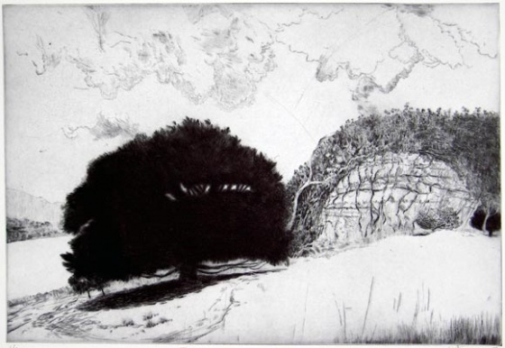 "<h4 style=""margin:0px 0px 5px 0px"">Family Midden & Colonial Quarry, Hobart</h4>Medium: Drypoint<br />Price: $500 