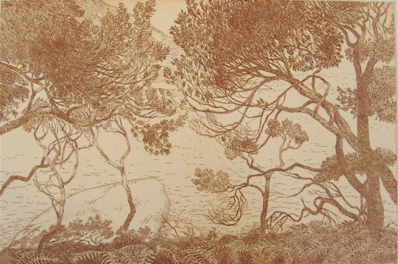 "<h4 style=""margin:0px 0px 5px 0px"">From Little Oberon Track -1</h4>Medium: Etching<br />Price: $440 
