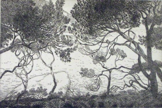 "<h4 style=""margin:0px 0px 5px 0px"">From Little Oberon Track - 2</h4>Medium: Etching<br />Price: $440 