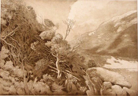 "<h4 style=""margin:0px 0px 5px 0px;"">Little Oberon Bay II</h4>Medium: Etching<br />Price: $550 <span style=""color:#aaa"">