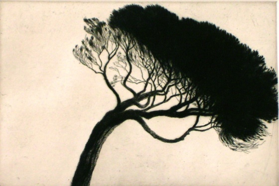 "<h4 style=""margin:0px 0px 5px 0px"">Williamstown Tree</h4>Medium: Etching/Drypoint<br />Price: $400 