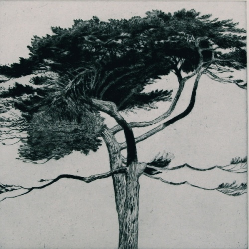 "<h4 style=""margin:0px 0px 5px 0px"">Williamstown Tree #2 by John Spooner</h4>Medium: Drypoint<br />Price: $700 