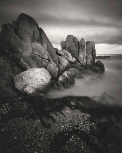 "Cape Conran. 4<br /><br />Medium: Siver Gelatin Print Pinhole Camera<br />Price: $1,400<br /><a href=""Artwork-Tatnall-CapeConran.4-3085.htm"">View full artwork details</a>"