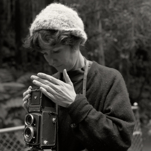 "The Photographers. Tess Clark<br /><br />Medium: Silver Gelatin print<br />Price: $1,200<br /><a href=""Artwork-Tatnall-ThePhotographers.TessClark-3108.htm"">View full artwork details</a>"